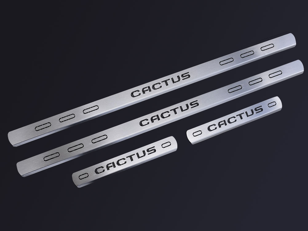 CITROEN C4 CACTUS DOOR SILLS - Quality interior & exterior steel car accessories and auto parts