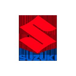 suzuki_250